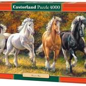 Пазлы 4000 Скакуны 4лошади С-400119 Castorland касторленд Польша