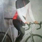 Вело костюм утепленные штаны и кофта Crane р.40 евро Германия