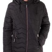 Мужские демисезонные куртки стеганки 16033-5