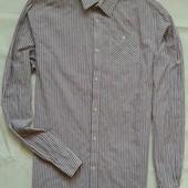 Хлопковая рубашка в полоску Scotch & Soda ( M-L )