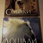 Лошади собаки альбом подарочный изд.пеликан шикарный подарок