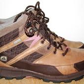 тёплые ботинки Кларкс 25.3 см