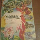 Познавательная книга Пресмыкающиеся Джуди Нейер серия Интересное рядом