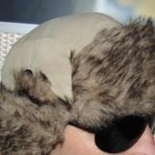 Стильная зимняя фирменная шапка  Gee Jay 58-60