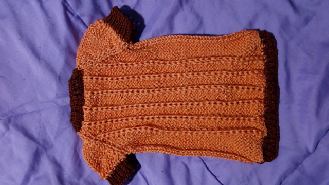 Кофточка на собачку оранжевая фото №1