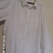 Oskar XL-xxxL сорочка