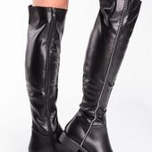 Женские демисезонные высокие сапоги на низком каблуке