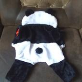 Костюм Панда для маленькой собачки или для взрослого кота