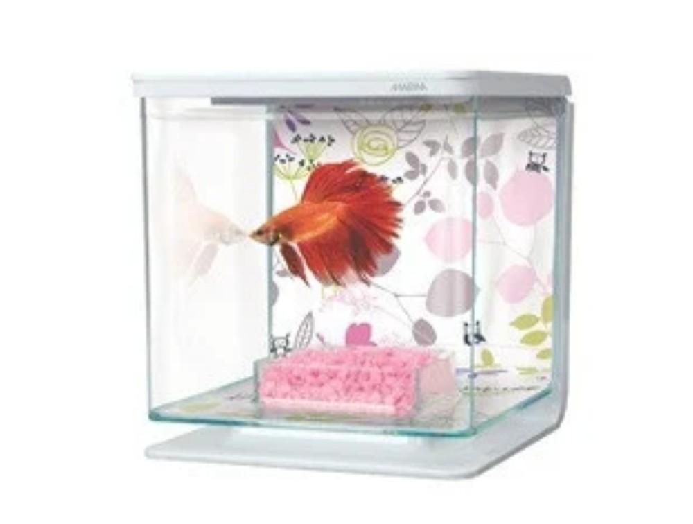 Аквариум для рыбки- петушка фото №1