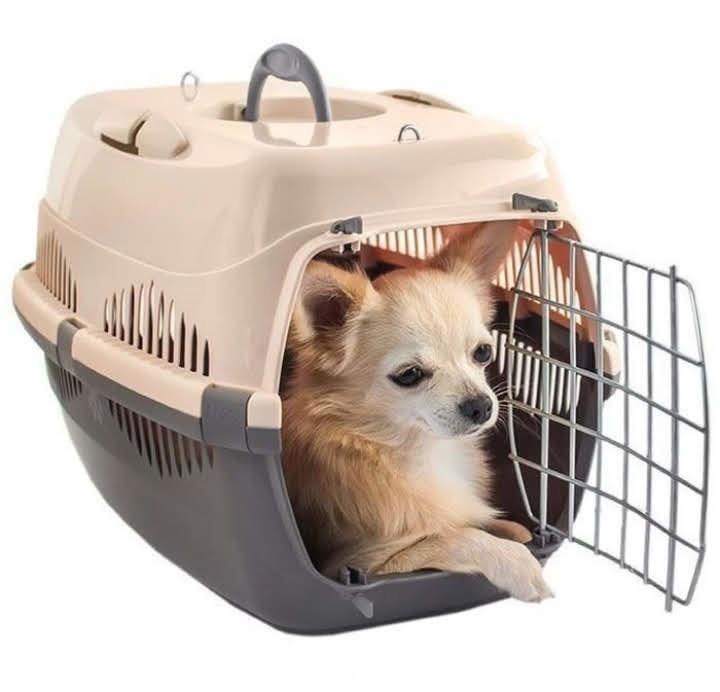 Корзина для животных переноски перевозки похода к ветеринару с дверцей фото №1