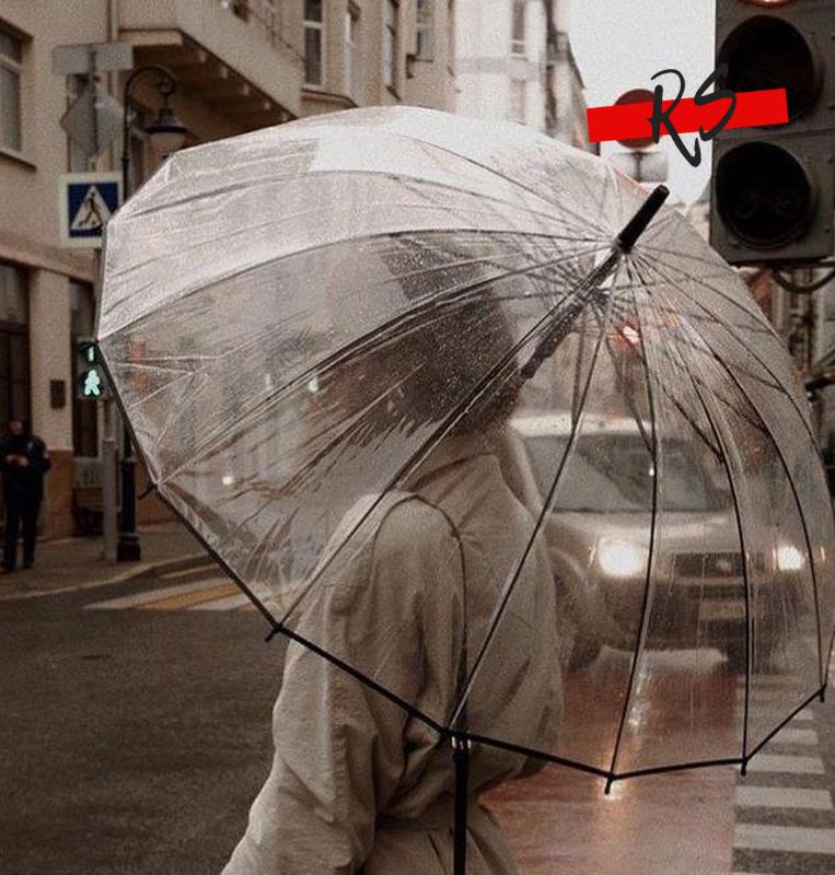 Прозрачный зонт трость полуавтомат fiaba антишторм 16 спиц в чехле фото №1