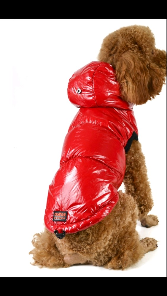 Жилет для собак на синтепоне подклад флис фото №1